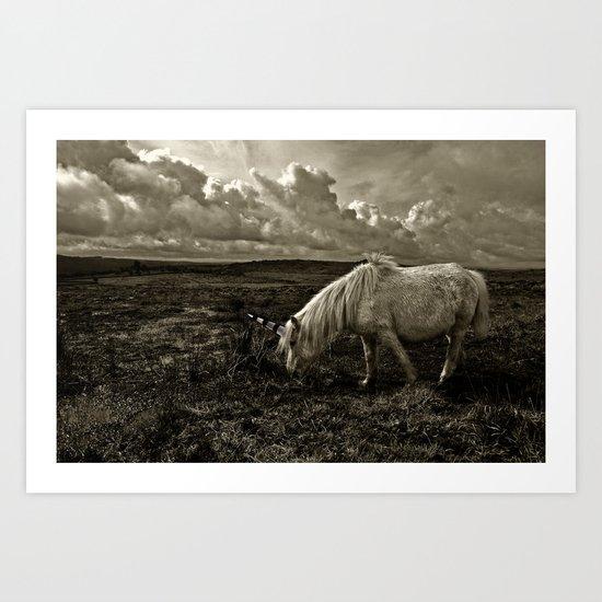 The Unicorn Grazing  Art Print