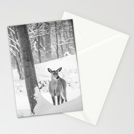 Interesting encounter Stationery Cards