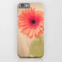 Sitting Pretty iPhone Case