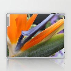 Birds of Paradise Laptop & iPad Skin