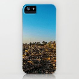 Fallow field in the Lomellina countryside at sunset full of yellow flowers iPhone Case