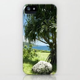 Keanae Point Maui Hawaii iPhone Case