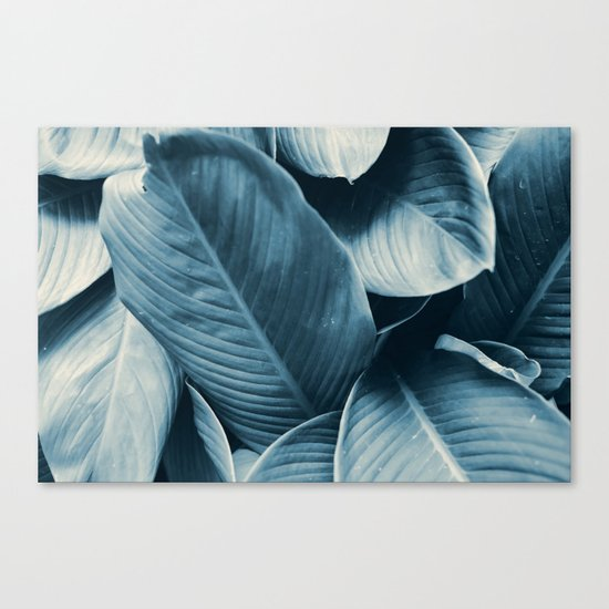 Blue Tropical Leaves Canvas Print