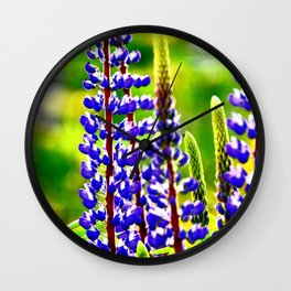 VIBRANT PURPLE LUPINES GLOWING IN SPRING Wall Clock