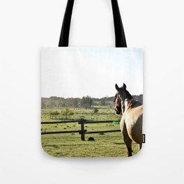 Criollo Horse Tote Bag