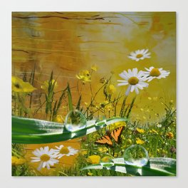 Yellow daisies and waterdroplets with butterfly by annmariescreations Canvas Print