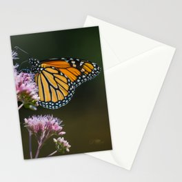 August Monarch Stationery Cards