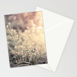 Morning Blush Stationery Cards
