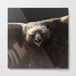 Just try me Metal Print