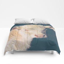 Calf Comforters