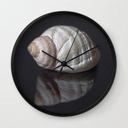 Seashell snail reflection Wall Clock