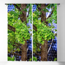 Four Seasons Photosynthesis - Summer. Green Oak Tree And A Solar Power Panel Blackout Curtain