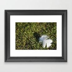 Feather on Green II Framed Art Print