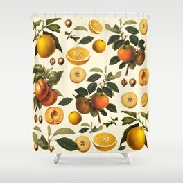 fruits patterb Shower Curtain