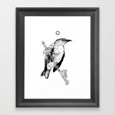 Key Bird Framed Art Print