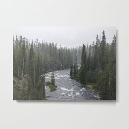 Yellowstone Forest - Nature Photography Metal Print
