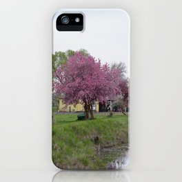 Placidity Along Highway 97 iPhone Case