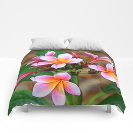 Plumeria Floral Art - Tropical Queen - Sharon Cummings Comforters