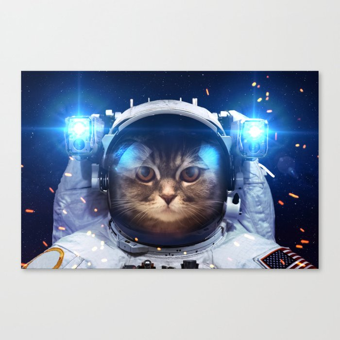 Beautiful cat in outer space Canvas Print