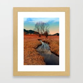 A stream, dry grass, reflections and trees | waterscape photography Framed Art Print