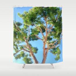 Sunseeker Shower Curtain