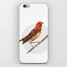 Messenger 006 iPhone Skin