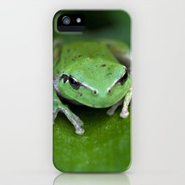 Green frog 20 iPhone Case