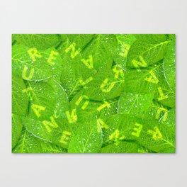Wonderful Nature V WH Canvas Print