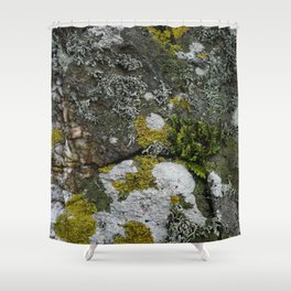 Coastal Rocks With Lichens and Ferns Shower Curtain