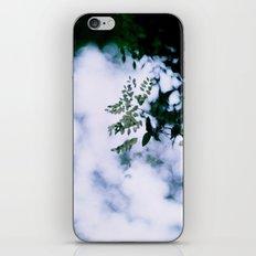 Green Bokeh iPhone & iPod Skin