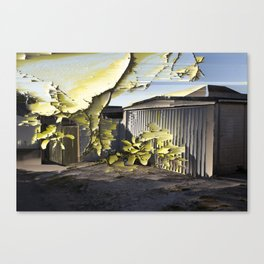 Interference #2 Canvas Print