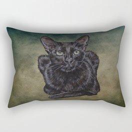 Cat Painting 16 Rectangular Pillow