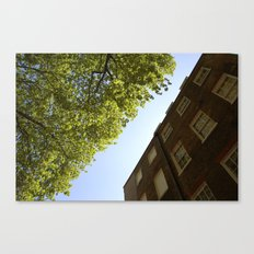 It looked like this Canvas Print