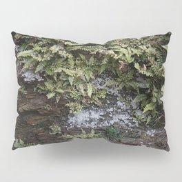 Fern Covered Coastal Cliff Face Pillow Sham