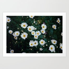 FLOWER SPACE Art Print