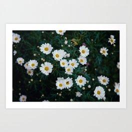 FLOWER SPACE Art Print