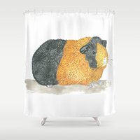 guinea pig Shower Curtains featuring Guinea Piggle by Elena O'Neill