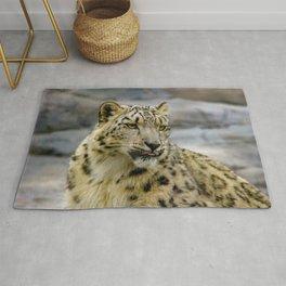 Snow leopard portrait photo Rug