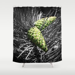 Pinecones Shower Curtain