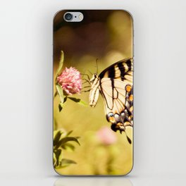 YELLOW SWALLOWTAIL BUTTERFLY iPhone Skin