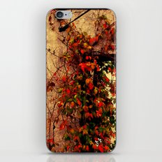 Old Abandoned Building And Flowers In Kentucky iPhone & iPod Skin