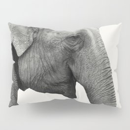 Elephant Animal Photography Pillow Sham