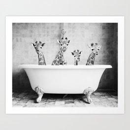 Four Giraffes in a Bath Art Print