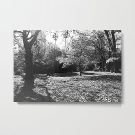 Black and White Treescape Metal Print