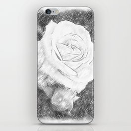 Pink Roses in Anzures 2 Charcoal iPhone Skin