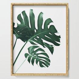 Tropical Monstera Finesse #1 #minimal #decor #art #society6 Serving Tray