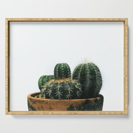02_Cactus Serving Tray