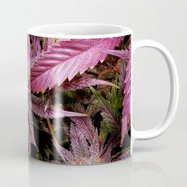 Magenta Coffee Mug