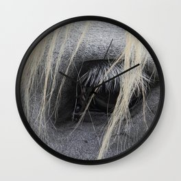 eye of the horse Wall Clock