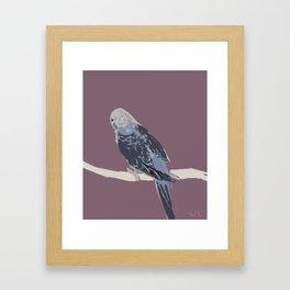 Littler Bird  Framed Art Print